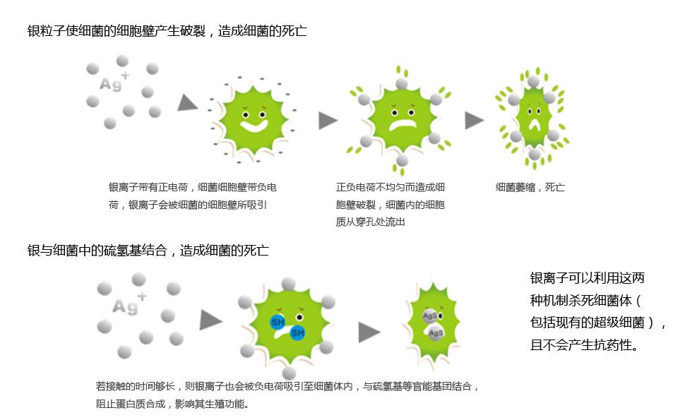 抗菌机理.jpg